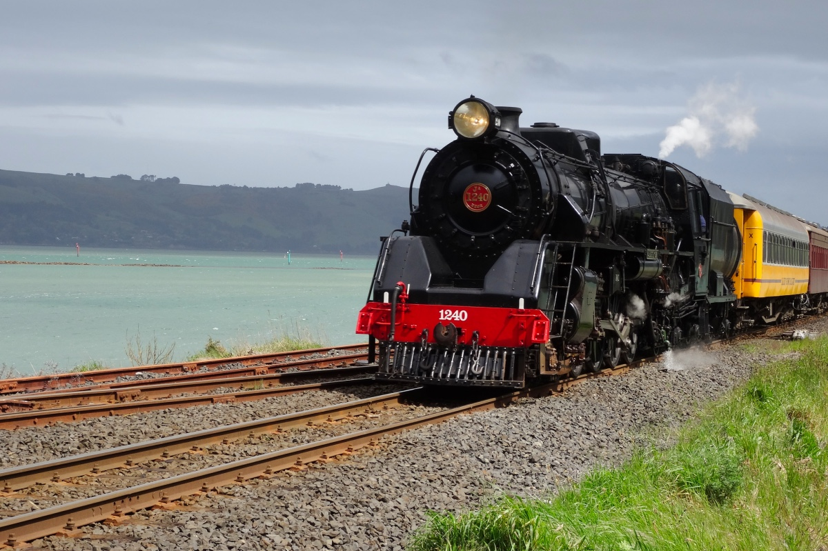 Train Otago Peninsula